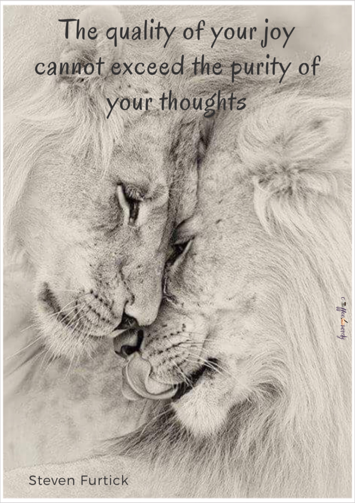 The quality of your joy cannot exceed the purity of your thoughts ...