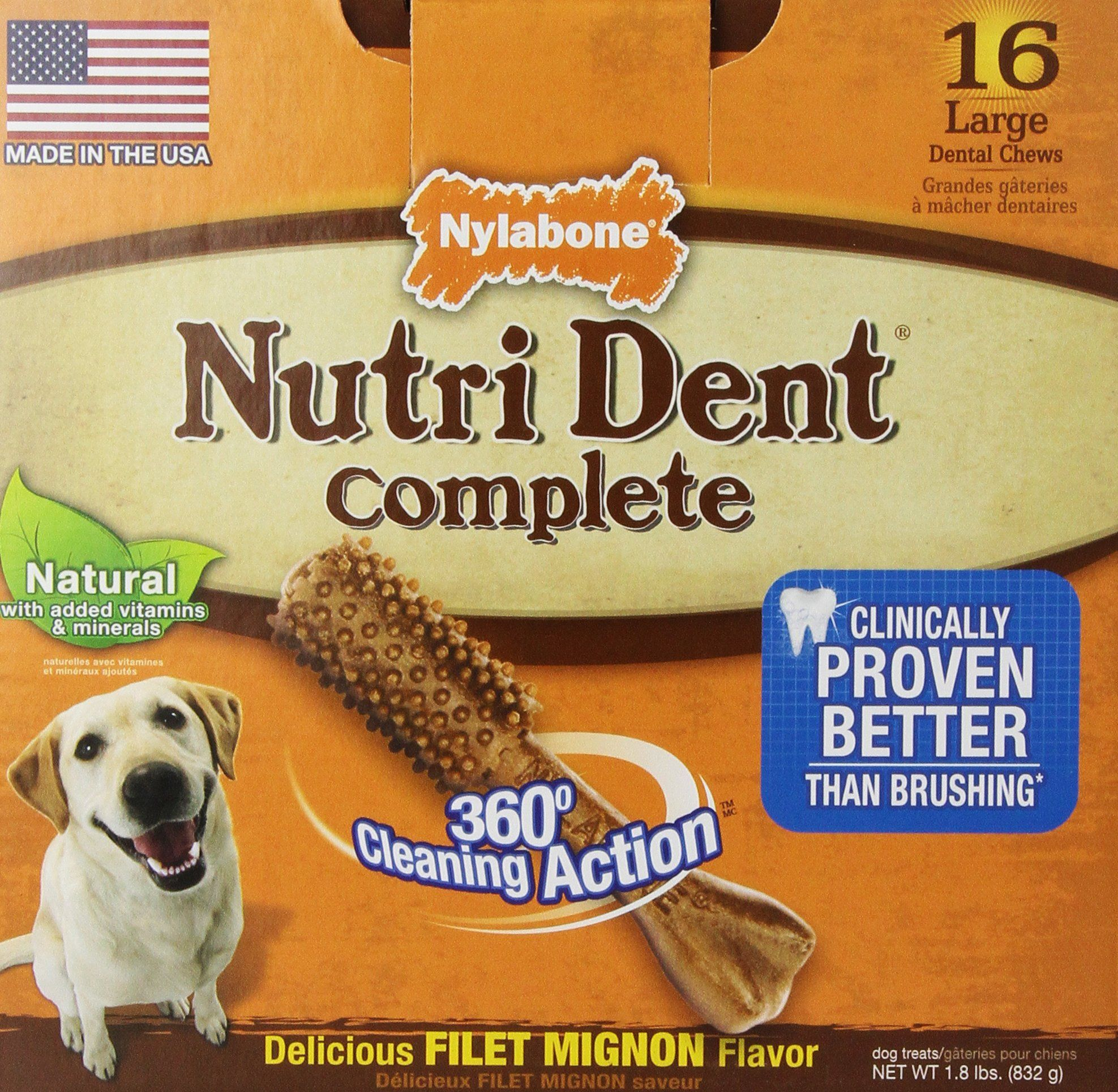 (LARGE, FILET MIGNON) Amazon.com : Nylabone Nutri Dent Dental Bone Dog Treat: Pet Chew Toys : Pet Supplies