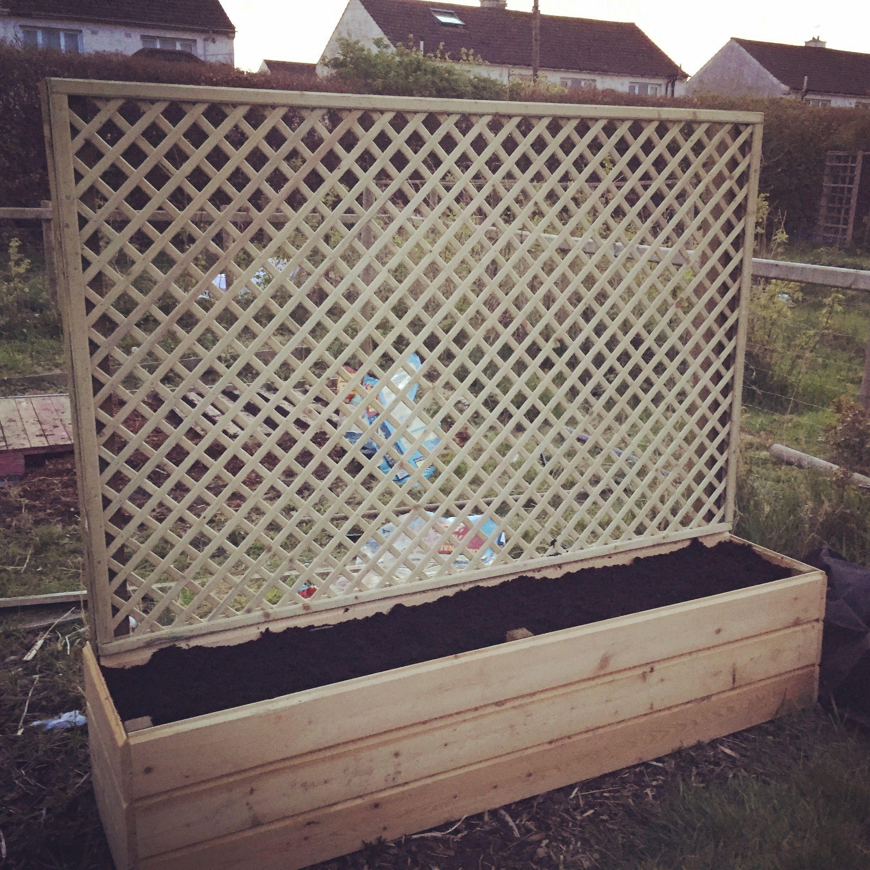 Lattice Planter Box Planted With Climbing Veg Diy Planters Diy Planter Box Planter Boxes