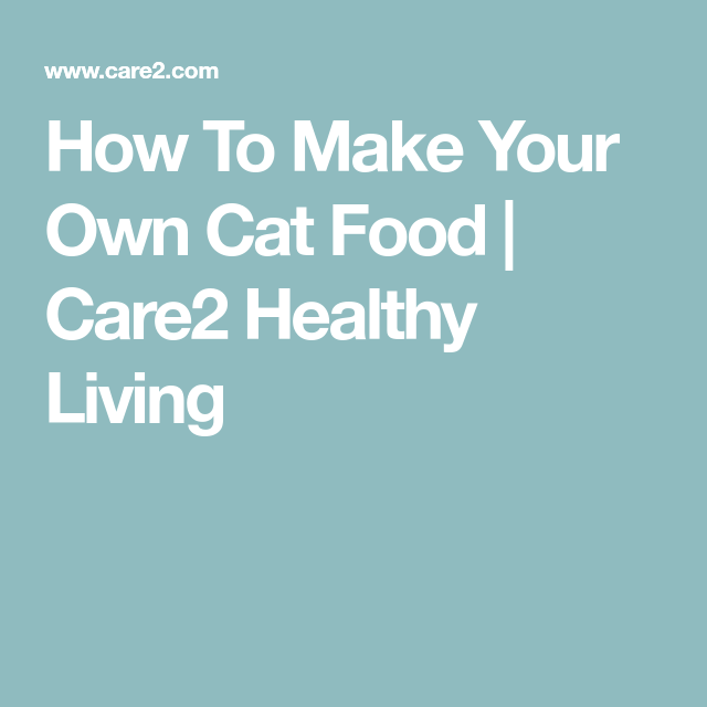 How To Make Your Own Cat Food Care2 Healthy Living Cat