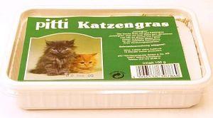 Cubeta para cultivar hierba fresca para que su gato tenga una buena digestión y evite las bolas de pelo.