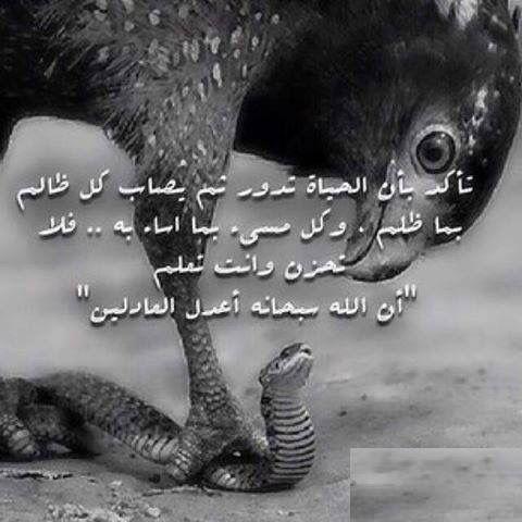 بالظبط مهما طال الظلم لابد من انو الله ينتقم من الظالم والنعم بالله Words Life Our Life