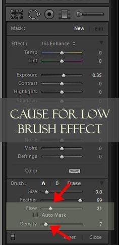 Lightroom Brushes: Learning about Flow and Density | Pretty Presets for Lightroom