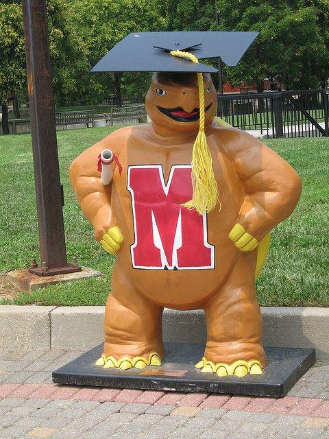 Testudo The Grad U Of Maryland University Of Maryland College