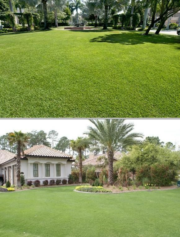 Danny's Lawn Care Services is among the local firms that offer ...