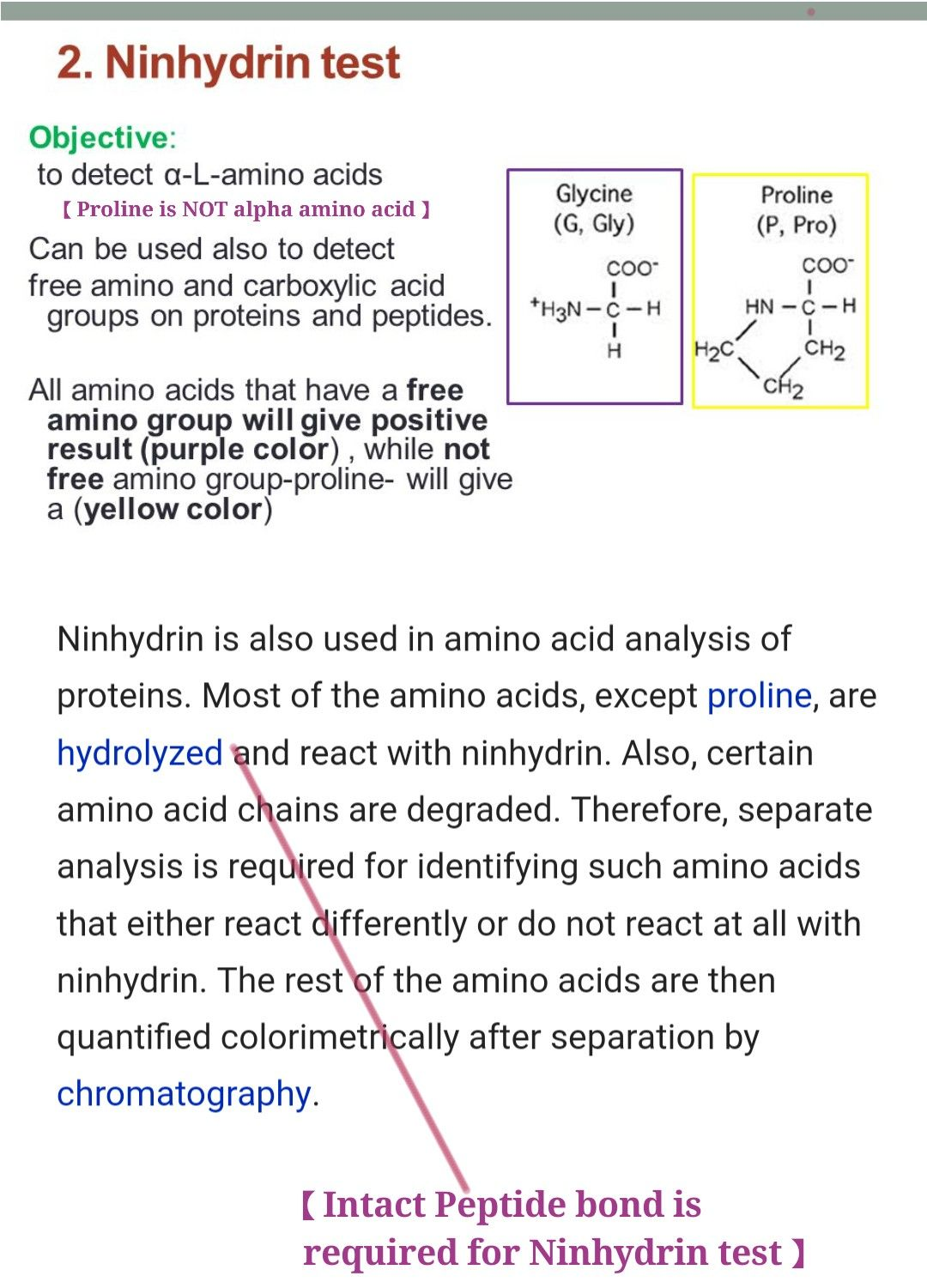 Ninhydrin Test For Alpha Amino Acid   Proline Peptide Bond