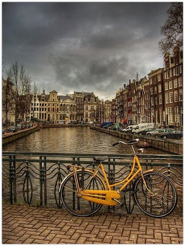 Art Symphony: Cycling in Amsterdam