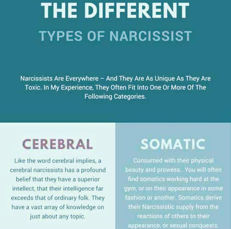 Pin by Lorena Sanchez Jauregui on Narcissistic Personality