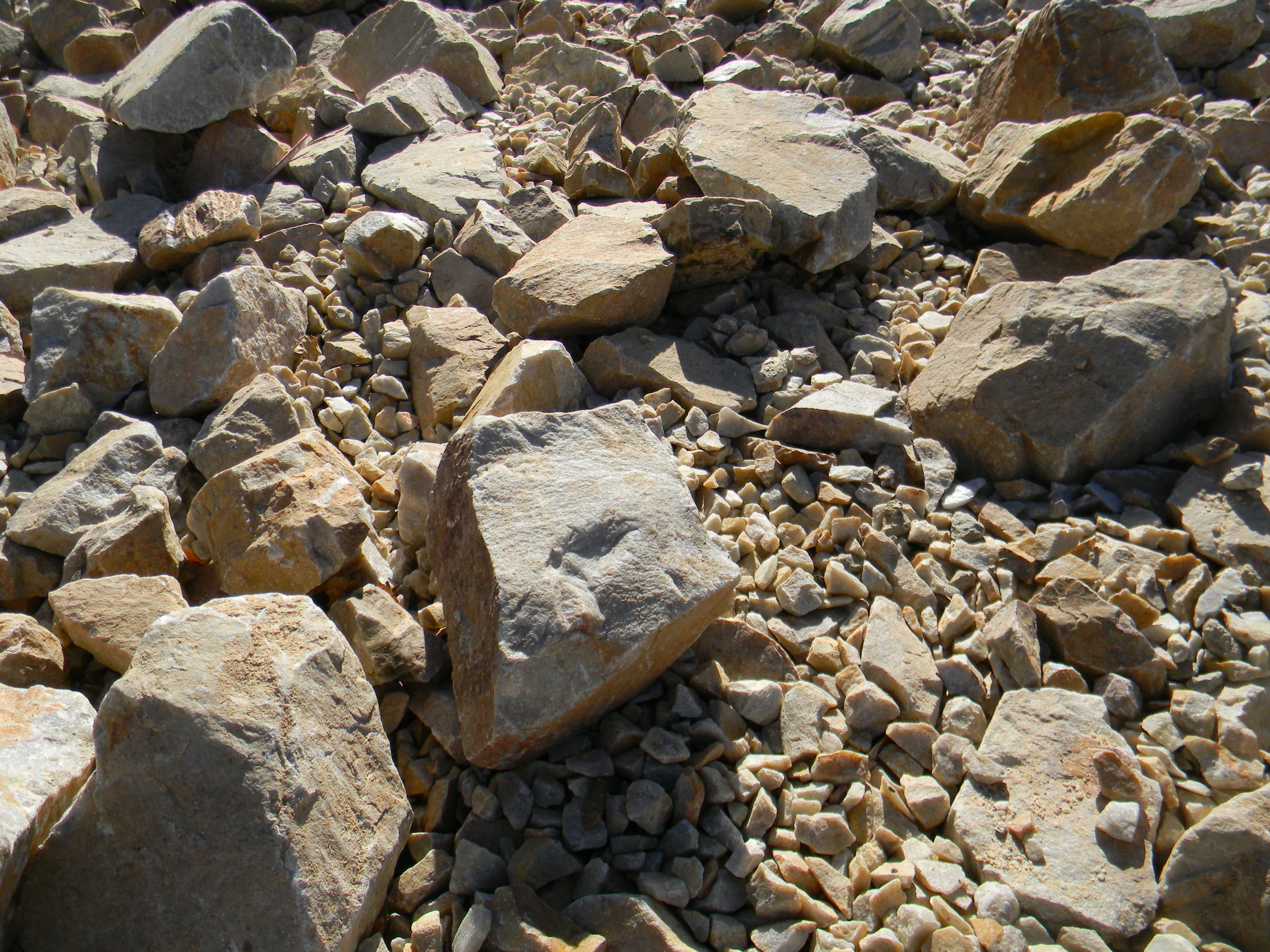 Decorative Quartz Rocks These Photos Are From A Landscape Renovation Where The Lawns Were