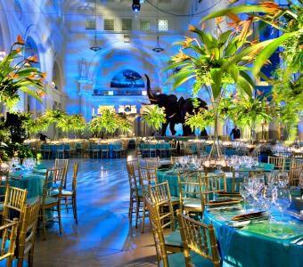 Chi wedding