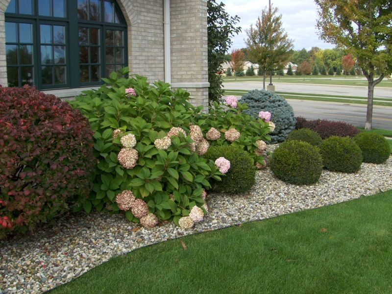 Landscape Around Patio | Shrub Plantings Around Office Building