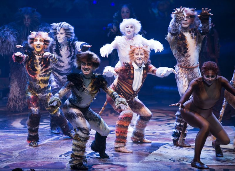 Cats\u0027 Opens on Broadway 8 Things That Happened at the