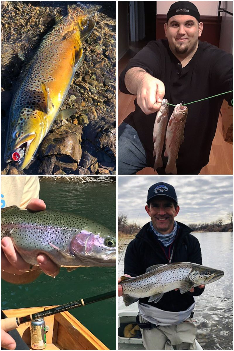 A helpful guide to begin trout fishing. Tips and advice on