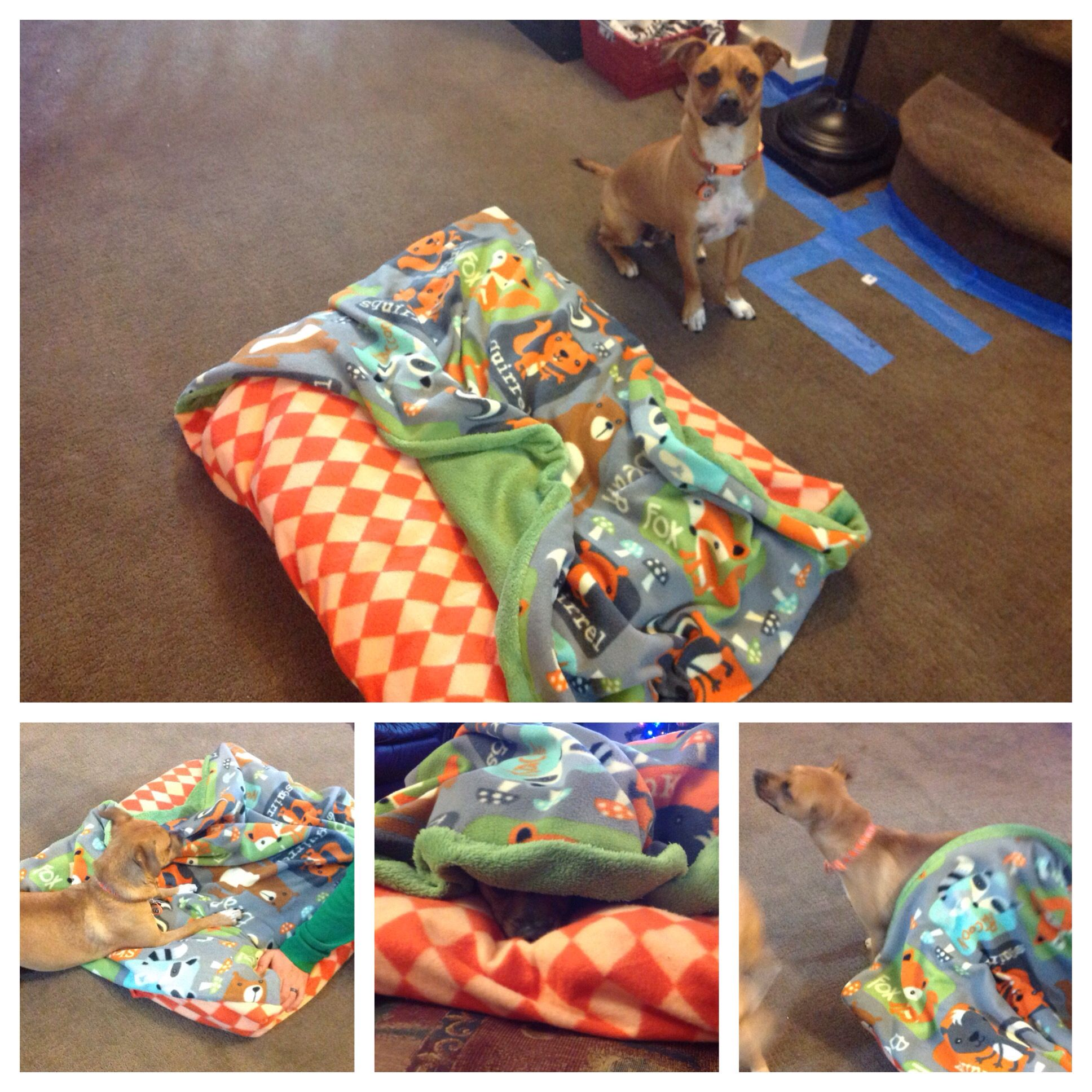 Dog Envelope Bed With Extra Fabric Along The Top For Their Own Covers To Crawl Under Diy Dog Bed Dog Pattern Dog House Diy