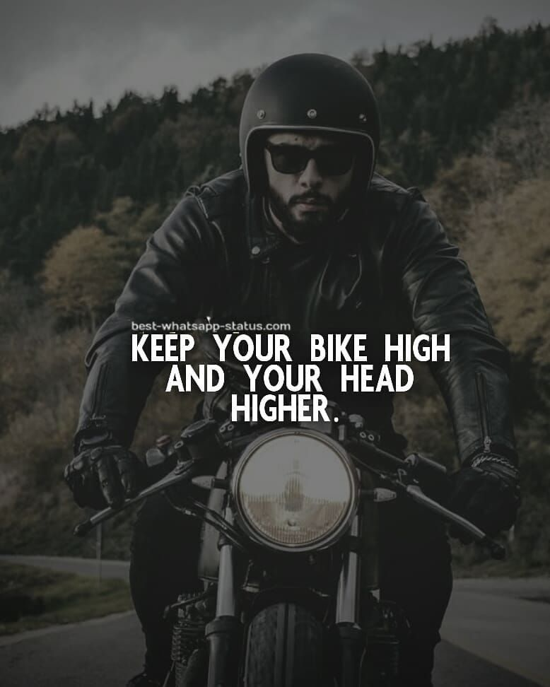100 Best Quotes For Bike Lovers Bike Lovers Riding Quotes
