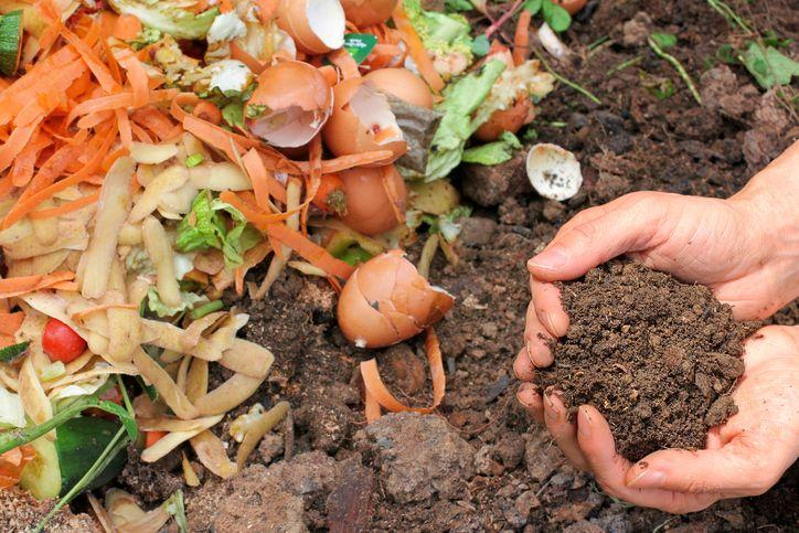 Une technique originale pour enrichir la terre dans un pot Composting - Ou Trouver De La Terre De Jardin