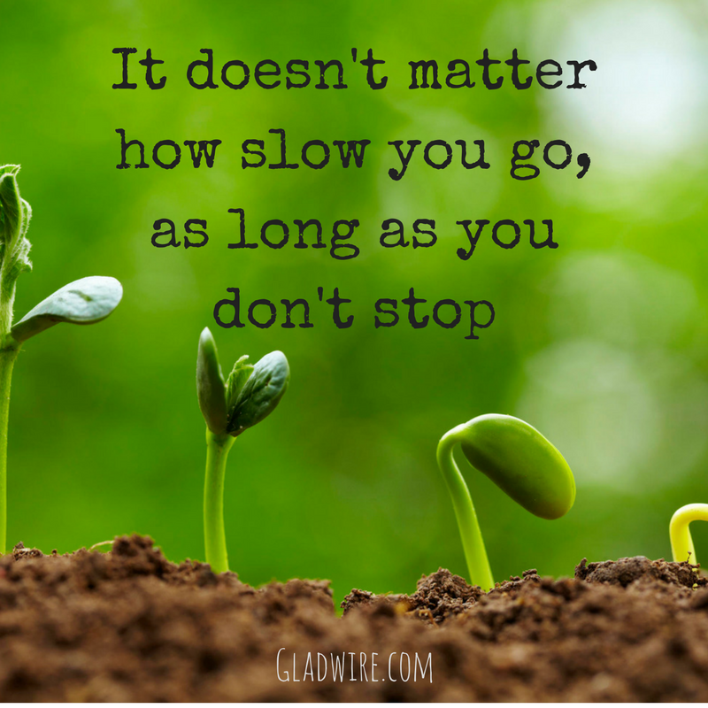 """It Doesn't Matter How Slow You Go, As Long As You Don't"