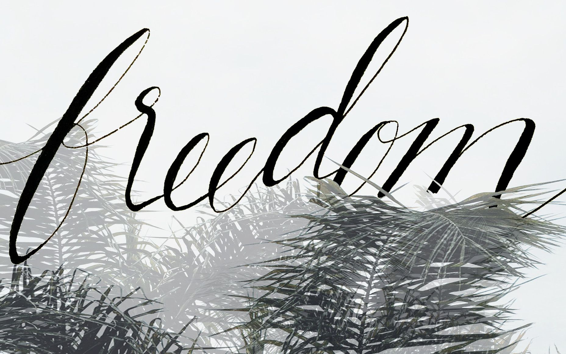 freedom+desktop+original.jpg 1 856×1 161 pikseliä