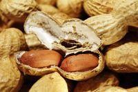 Untangling the relationship between food allergies and eczema.