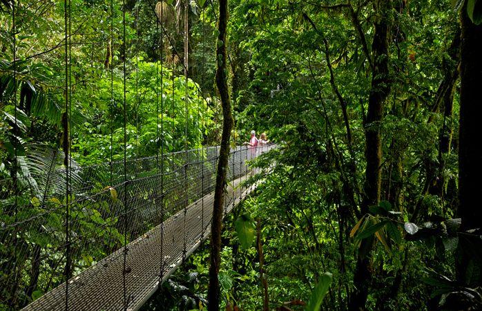 Riippusilta Arenalin kansallispuistossa - Costa Rica