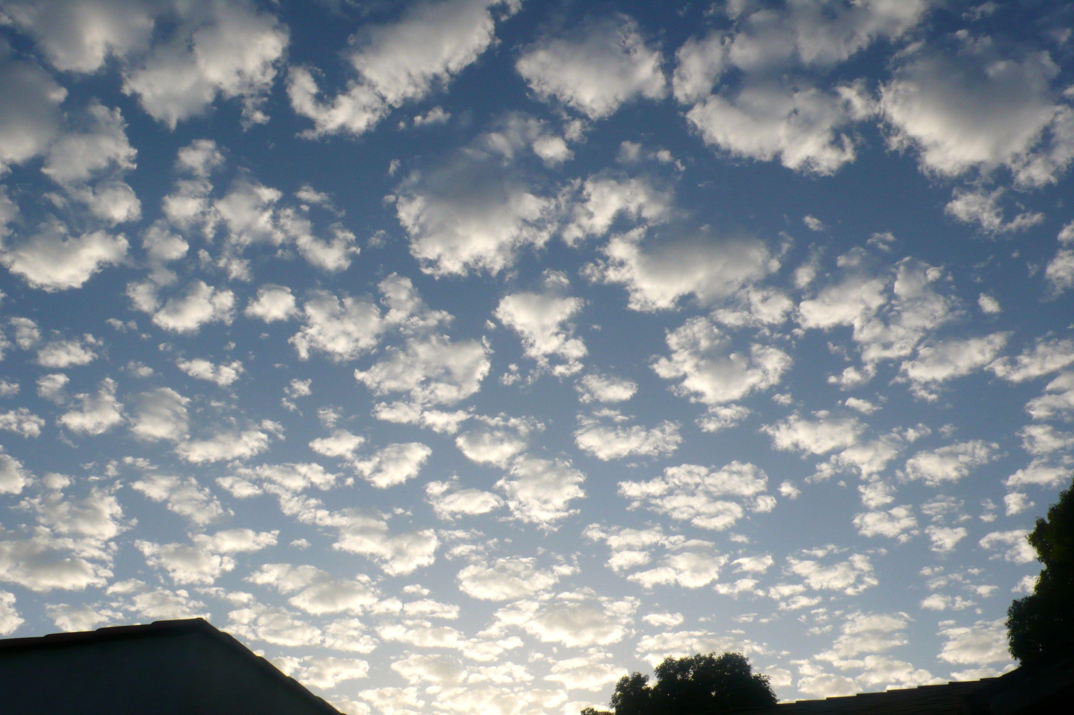 29++ Buttermilk skies info