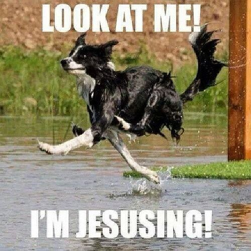 Haha love this  @shaneochand  #Jesus #God #easter #cross #crossequalslove #followme #follow #like #selfie #beautiful #funny #meme