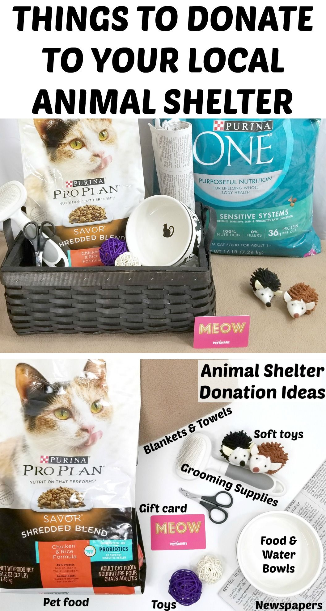 Things To Donate To Animal Shelter Animal Shelter Animal Shelter Donations Shelter