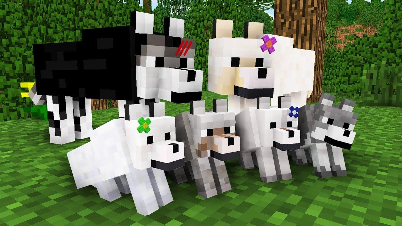 WOLF LIFE MOVIE  Cubic Minecraft Animations  All Episodes +