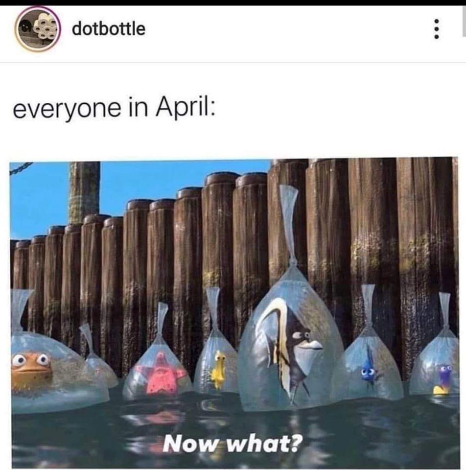 April 2020 Finding Nemo Nemo Memes Funny Memes Best Memes