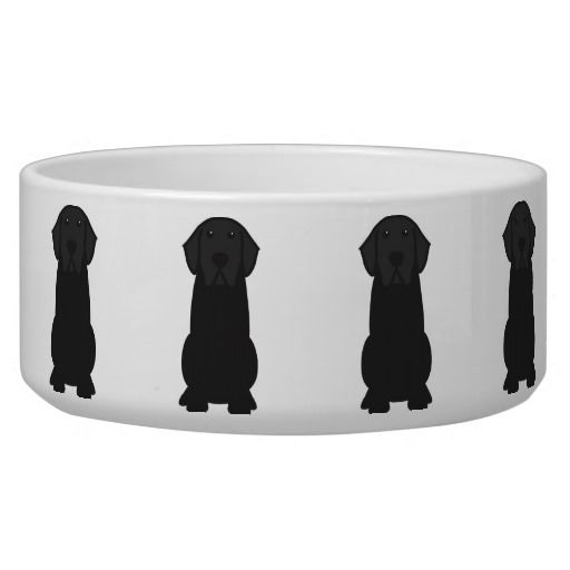 Black Lab Food Or Water Bowl Bowl Dog Bowls Labrador Quotes