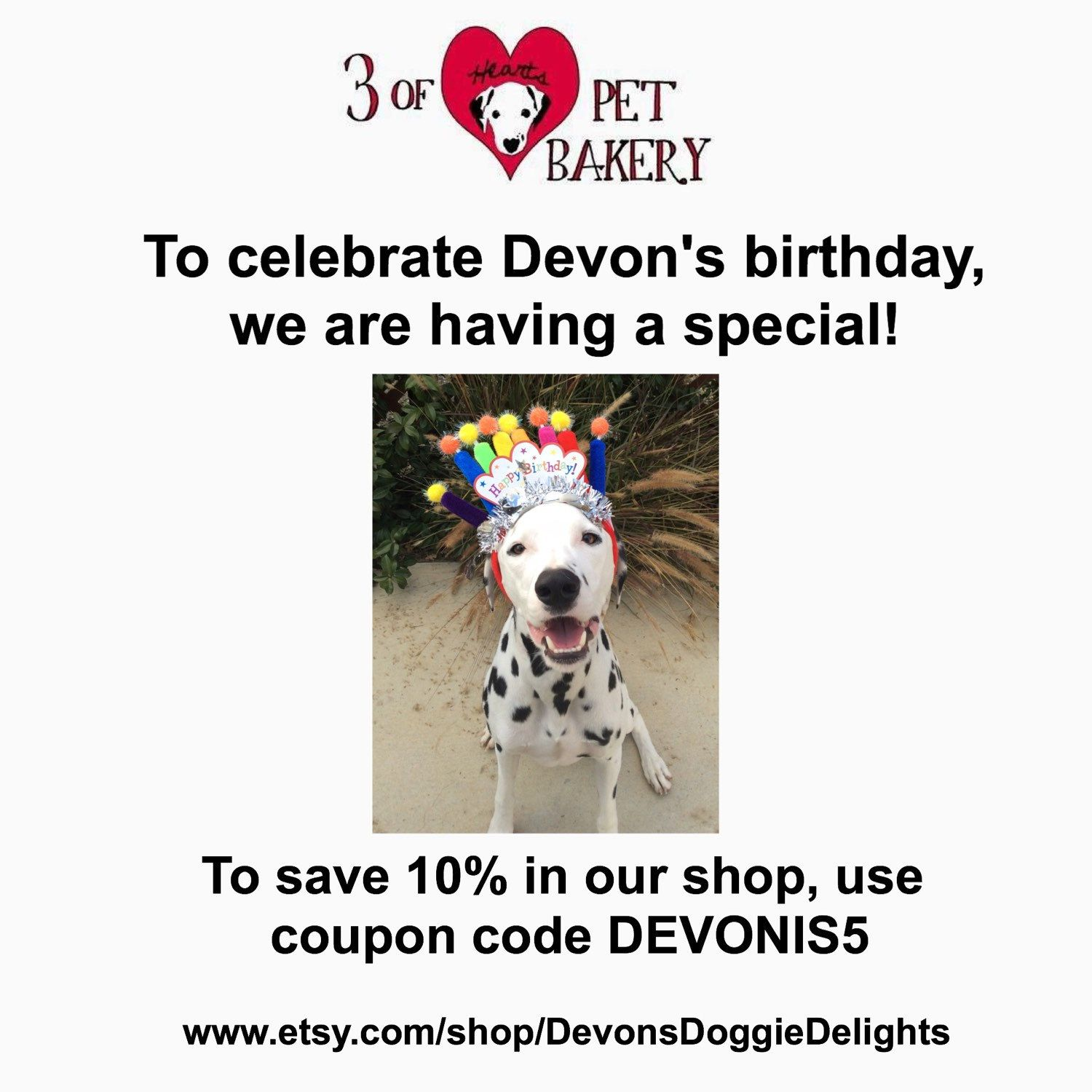 To celebrate Devon's birthday, we have a 10% off coupon for you, good through the 29th of December!!