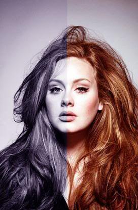 Adele. Artist Extraordinaire.