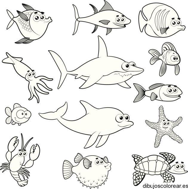 Animales marinos para colorear imprimir - Imagui | Mare, fondo ...