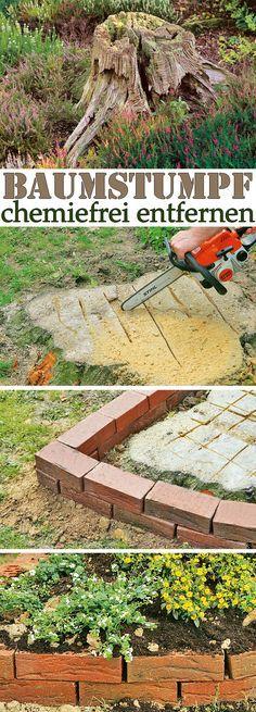 Baumstumpf entfernen Garten Baumstumpf entfernen, Baumstamm garten und Garten ideen ~ 01095814_Garten Gestalten Ohne Viel Arbeit