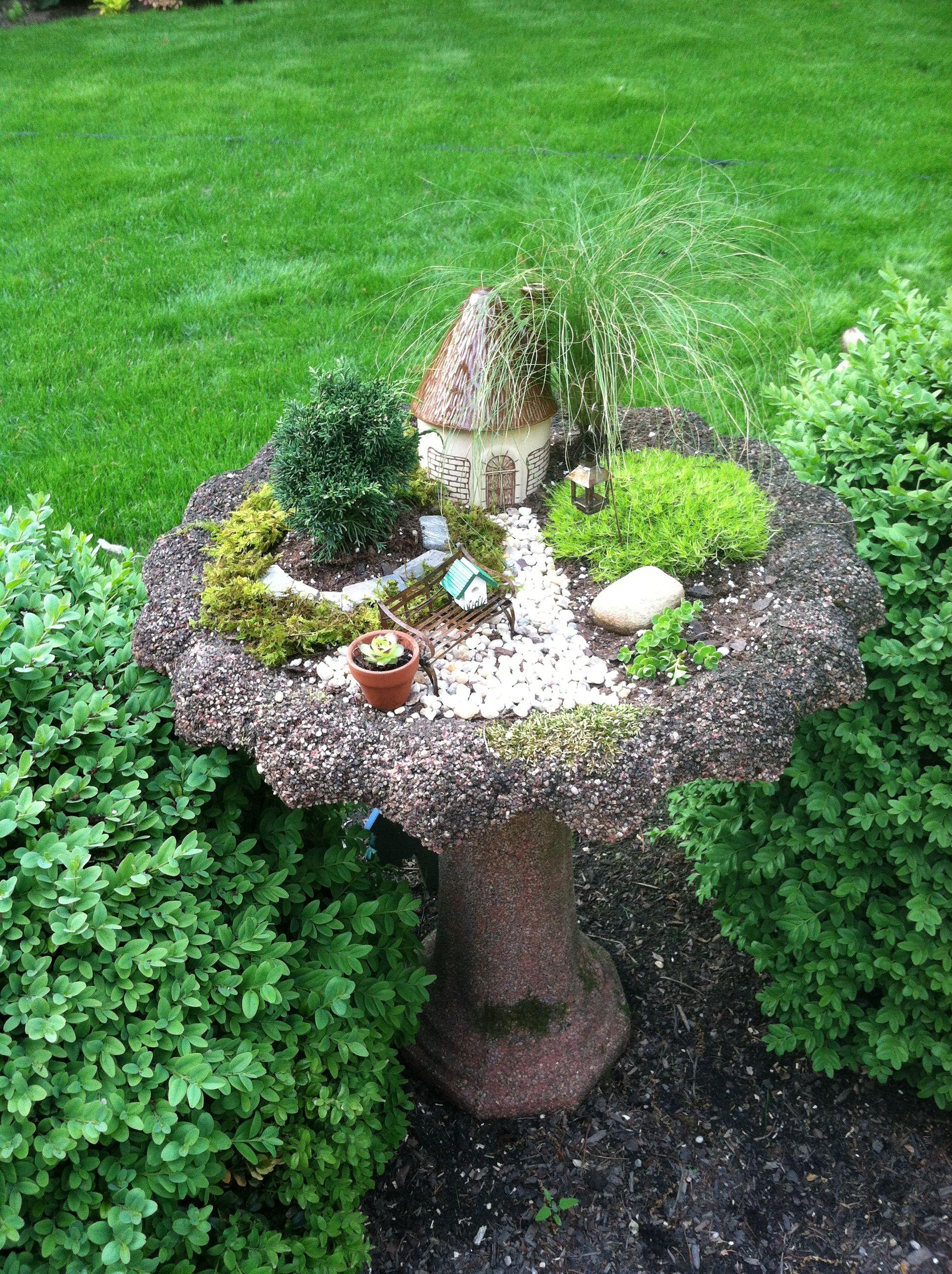 My Fairy Garden In A Bird Bath!