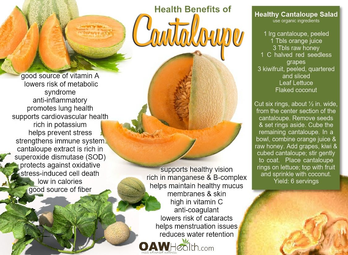 Cantaloupe Melon Calories – Smaller amount of sugars per 100g.