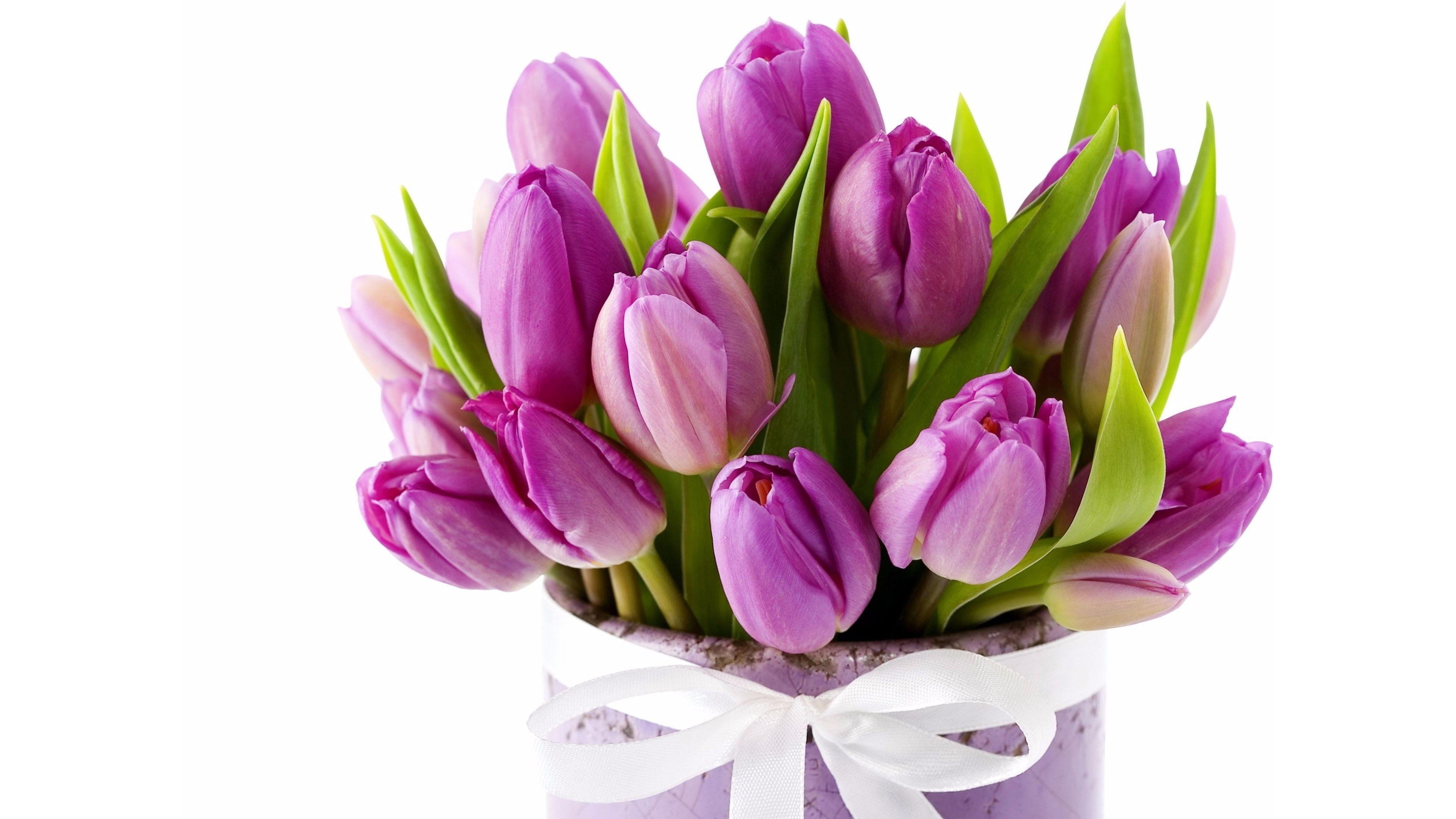 YouWall Purple Tulips Wallpaper Wallpaperwallpapersfree