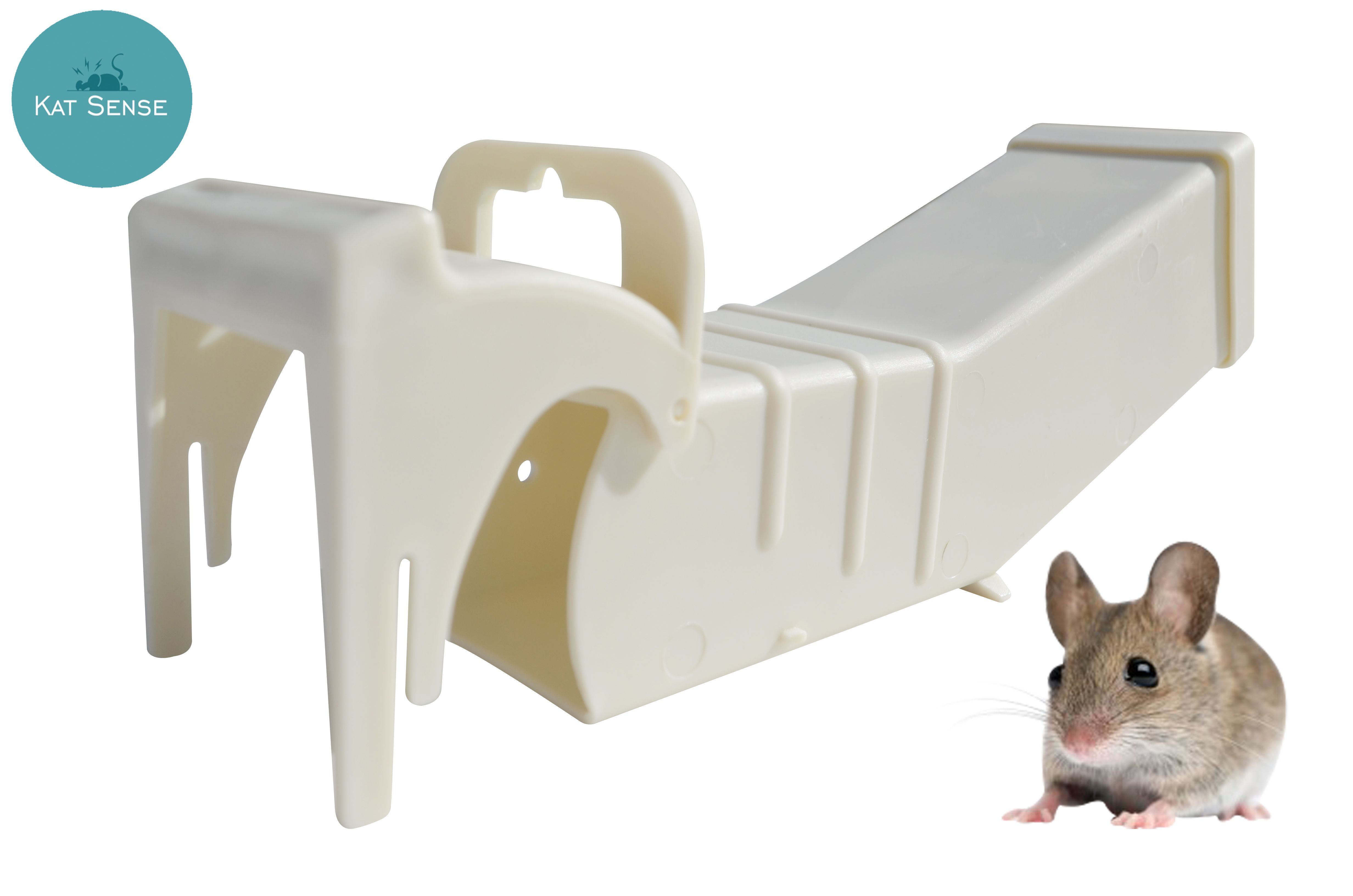 If you want to get rid of mice inside your property but