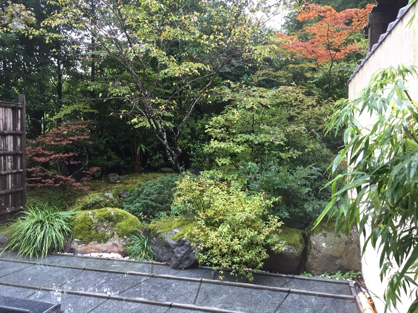 Japanese garden in a ryokan
