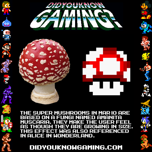 If you love gaming (and I know you do!) then you will love these ridiculously awesome video game history facts from did you know gaming (and other gaming history resources!). Take a stroll down memory lane with us today and get all nostalgic! Get your learn on, geek out, and have fun! #historyfacts