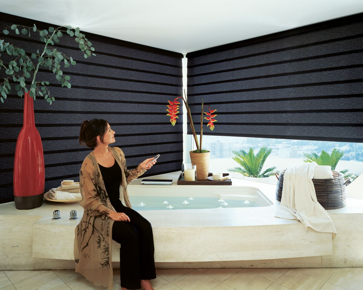 17 Best images about Motorized Shades on Pinterest  Window
