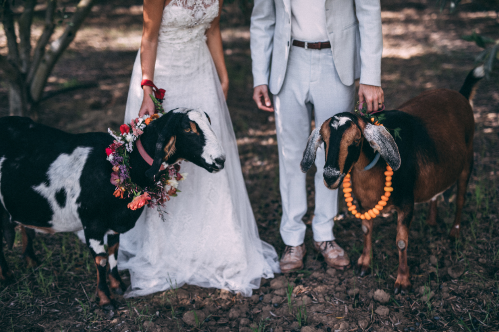 Quigley Alex Wedding Dress Couture Vows Vow Renewal