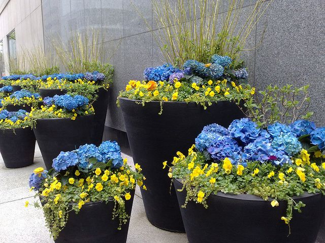 large garden pots for sale perth plant home depot canada flower