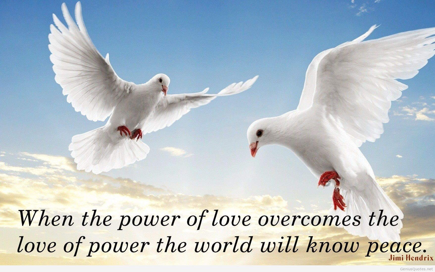 Quotes About Peace And Love Custom Peace Is The Highest Form Disclpine Quote .of Power The World