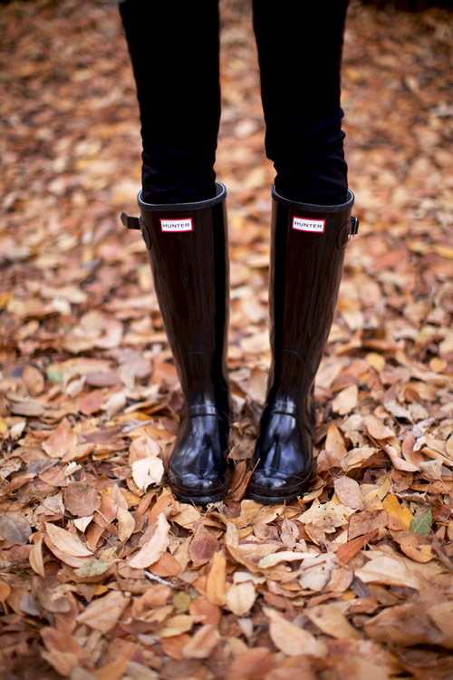 Hunter Botas + big piles  of Otoño leaves  piles Southern Style d167be