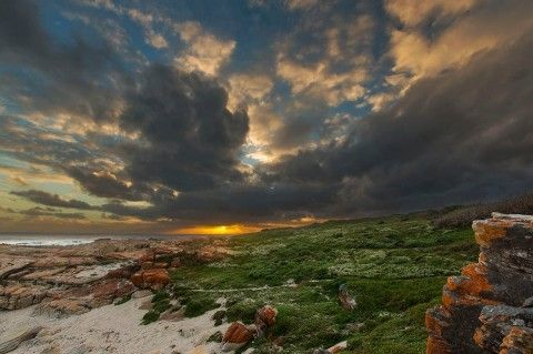 clive wright photography - Google Search - Cape St Francis