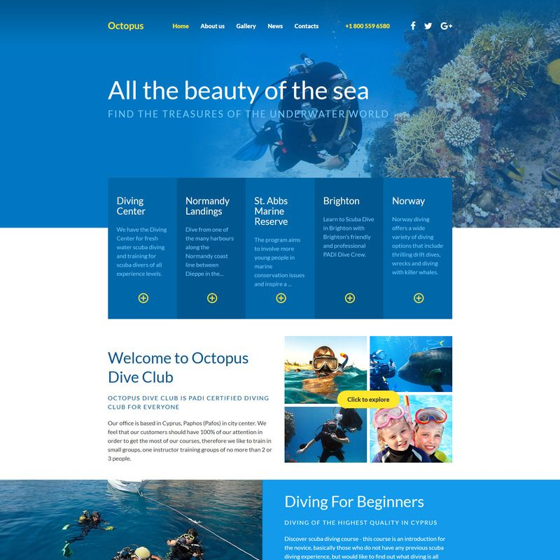 Bootstrap Website Templates Diving Bootstrap Website Template Small Screenshot  Bootstrap