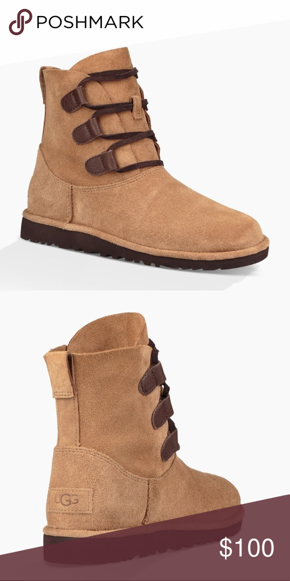 3438197000d UGG Elvi Chestnut Suede Lace Up Ankle Boot 🌲🌰 New with box! Suede ...