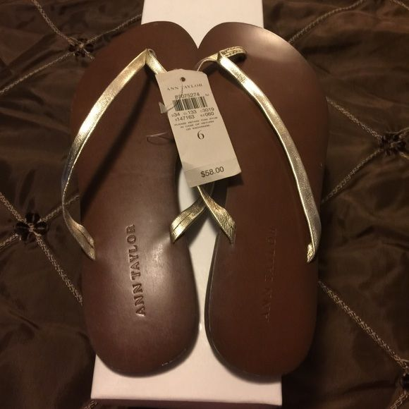 New Ann Taylor leather gold sandals. Size 6 Ann Taylor leather gold sandal in size 6. Classic, comfortable and cute! Ann Taylor Shoes Sandals
