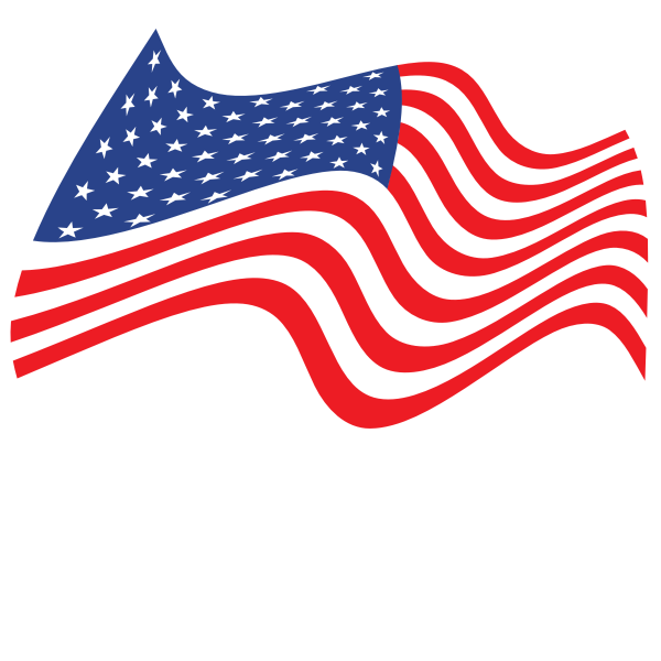 Waving Flag Of The United States Of America Flag United States Of America The Unit